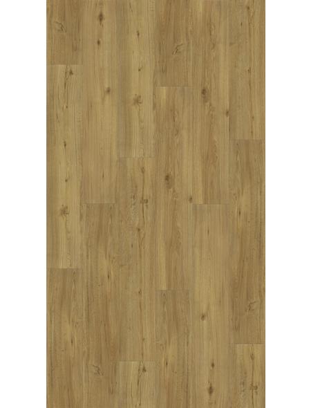 PARADOR Vinylboden »Basic 4.3«, BxL: 219 x 1209 mm, braun