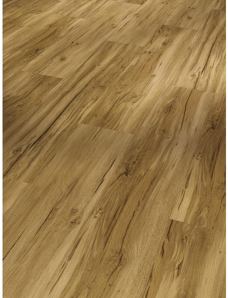 PARADOR Vinylboden »Basic 4.3«, BxL: 219 x 1209 mm, eiche
