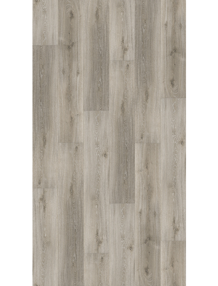 PARADOR Vinylboden »Basic 4.3«, BxL: 219 x 1209 mm, grau