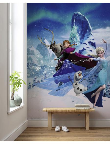 Vliestapete »Frozen Elsas Magic«, bunt, glatt