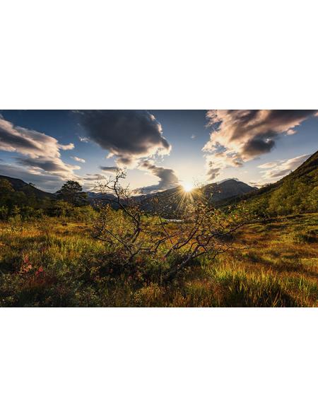 KOMAR Vliestapete »Herbstwelten«, Breite 450 cm, seidenmatt