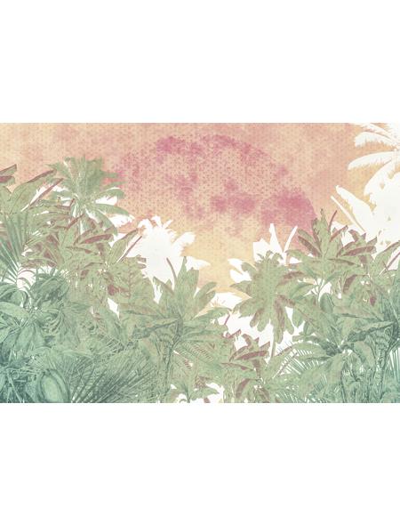 KOMAR Vliestapete »Palmiers«, Breite 400 cm, seidenmatt