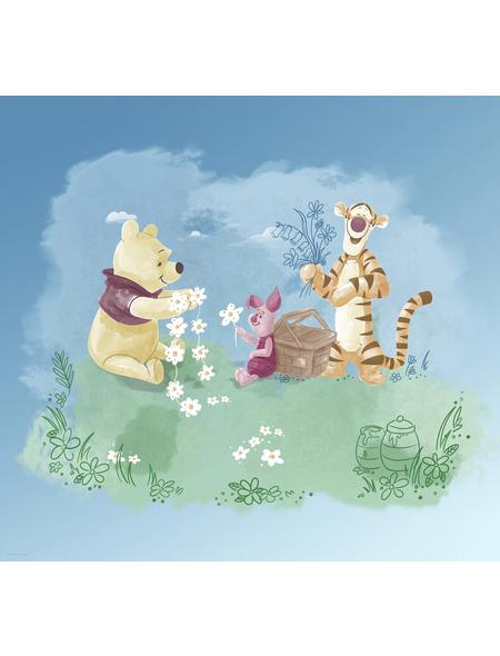 Vliestapete »Winnie Pooh Picnic«, bunt, glatt