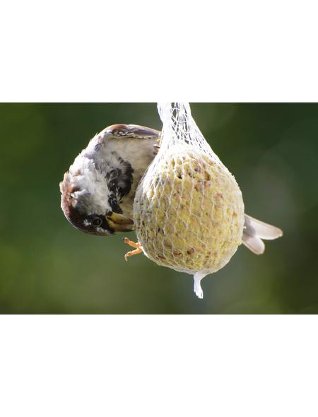 Vogelfutter, Insekten, 9000 g
