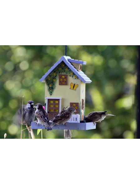 DOBAR Vogelfutterhaus im USA-Stil Sommer