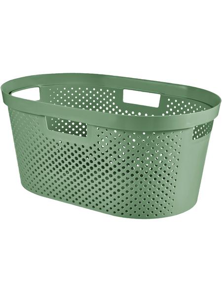 Wäschebox, BxHxL: 58 x 26,5 x 38,5 cm, Kunststoff