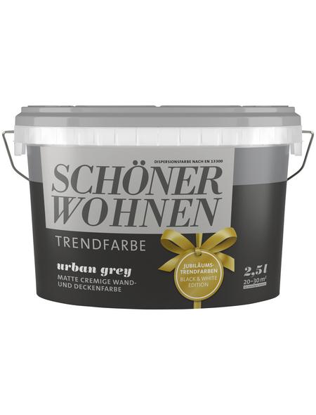 SCHÖNER WOHNEN Wandfarbe »Trendfarbe, Urban grey«, urban grey, matt
