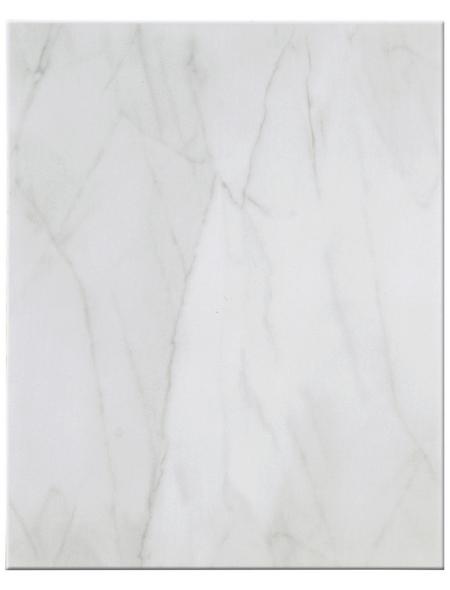 Wandfliese »Tania«, Steinzeug, grau, glänzend