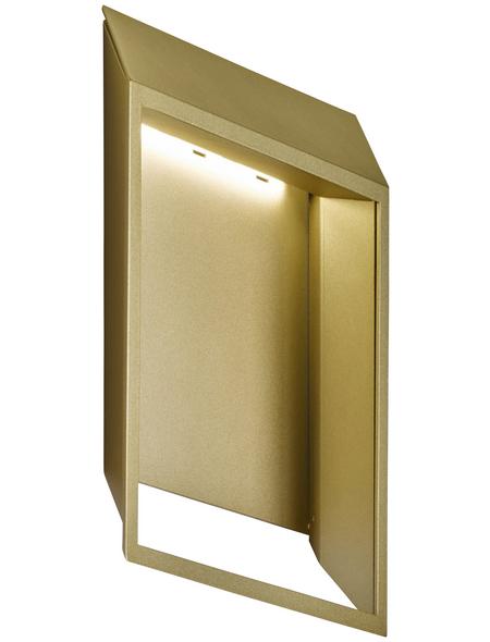 wofi® Wandleuchte goldfarben 5,5 W, 1-flammig, inkl. Leuchtmittel in warmweiß