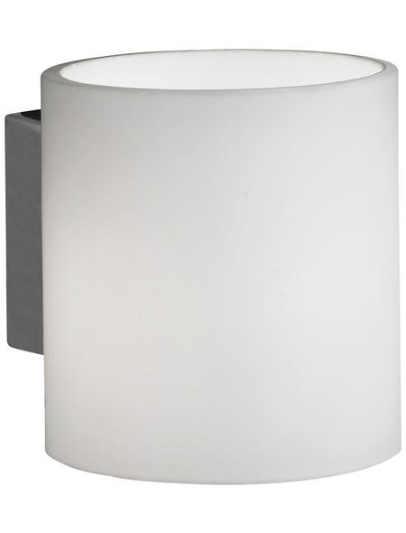 Wandleuchte nickelfarben 28 W, 1-flammig, G9, inkl. Leuchtmittel in warmweiß