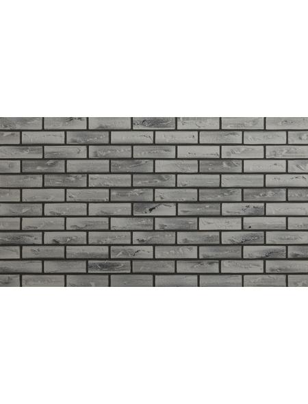 ELASTOLITH Wandverblender »Nebraska«, 48 Stk., HxTxB: 7,1 x 0,4 x 24 cm, beige / bunt