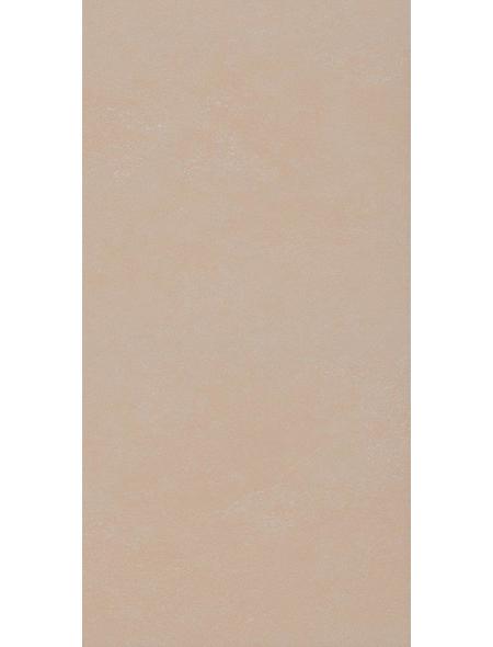 BARIDECOR AQUA Wandverblender »Wandfliese«, sandstein, Kunststoff, Stärke: 4 mm