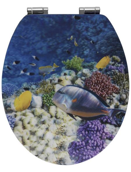 WENKO WC-Sitz »Fish«, MDF, oval, mit Softclose-Funktion