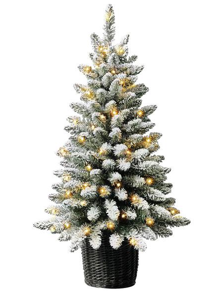 Hagebaumarkt Weihnachtsbaum