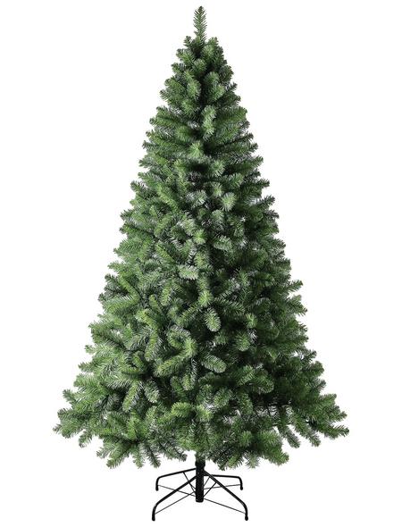 Evergreen Weihnachtsbaum »Oxford Kiefer «, Höhe: 180 cm, grün