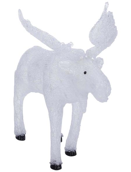KONSTSMIDE Weihnachtsfigur, Elch, Höhe: 65 cm, Netzbetrieb