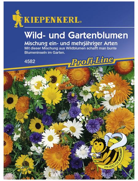 KIEPENKERL Wild- u. Gartenblume, Mischung, Samen, Blüte: mehrfarbig