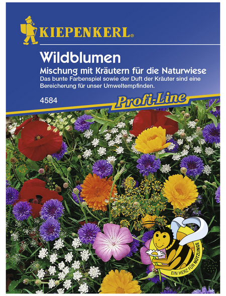 KIEPENKERL Wildblume mit Kräutern, Mischung, Samen, Blüte: mehrfarbig
