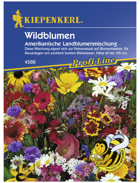 KIEPENKERL Wildblumen, »Mischung«, Samen, Blüte: mehrfarbig