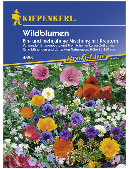 KIEPENKERL Wildblumenmischung, Samen, Blüte: mehrfarbig