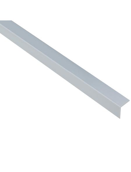 GAH ALBERTS Winkelprofil Kunststoff grau 2600 x 20 x 20 x 1 mm