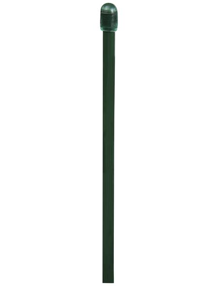 FLORAWORLD Zaungeflecht-Spannstab, BxHxT: 0,6 x 130 x 0,6 cm, grün, für Zaungeflecht