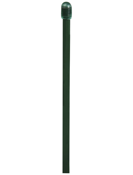 FLORAWORLD Zaungeflecht-Spannstab, BxHxT: 0,6 x 205 x 0,6 cm, grün, für Zaungeflecht