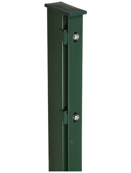 FLORAWORLD Zaunpfosten, Stahl, BxHxL: 6 x 4 x 240 cm