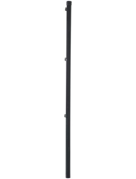 FLORAWORLD Zaunpfosten »Standard«, Stahl, BxLxT: 3,4 x 150 x 3,4 cm