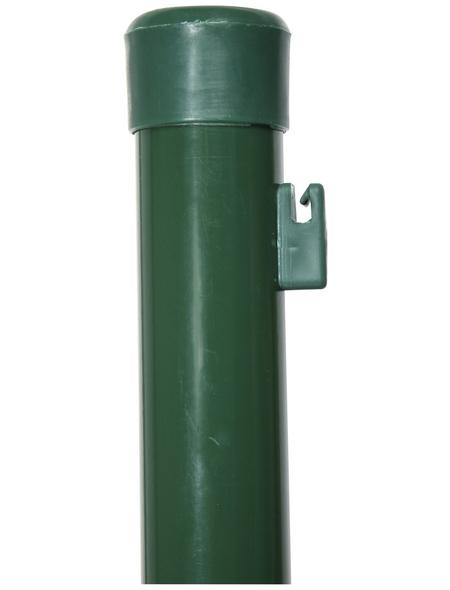 FLORAWORLD Zaunpfosten »Standard«, Stahl, BxLxT: 3,4 x 250 x 3,4 cm