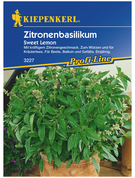 KIEPENKERL Zitronenbasilikum americanum Ocimum »Sweet Lemon«