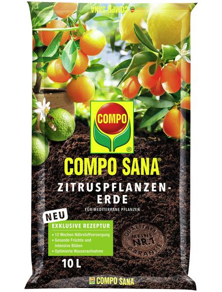 COMPO Zitruspflanzernerde »COMPO SANA® «, für Zitruspflanzen