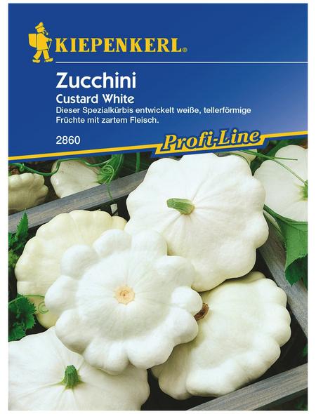 KIEPENKERL Zucchini Cucurbita pepo »Custard White«