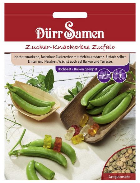 DÜRR SAMEN Zucker-Knackererbsen   sativum Pisum »Zufalo«