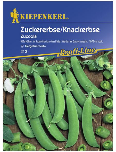 KIEPENKERL Zuckererbsen sativum Pisum »Zuccola«