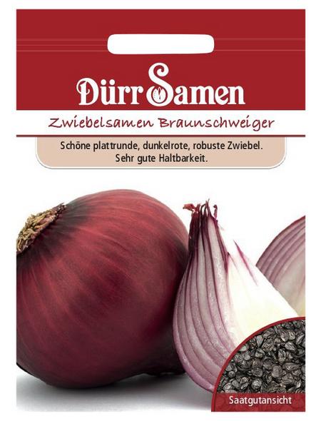 DÜRR SAMEN Zwiebel Sommerzwiebeln Braunschweiger