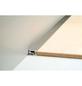 CARL PRINZ Abschlussprofil »PS 400«, BxHxL: 28 x 15 x 900 mm, 10 Stück-Thumbnail