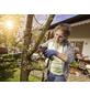 BOSCH Akku-Säge »NanoBlade EasyCut«, 12 V-Thumbnail