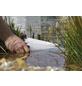 OASE Algenschutz »AquaAktiv«, geeignet für: Teiche-Thumbnail