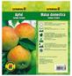 GARTENKRONE Apfel, Malus domestica »James Grieve«, Früchte: süß-säuerlich, zum Verzehr geeignet-Thumbnail