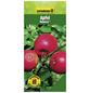 GARTENKRONE Apfel, Malus domestica »Rewena«, Früchte: süß, zum Verzehr geeignet-Thumbnail