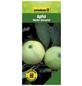 GARTENKRONE Apfel, Malus domestica »Weisser Klarapfel«, Früchte: süß-säuerlich, zum Verzehr geeignet-Thumbnail