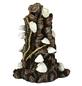 OASE Aquariendeko, biOrb Muschelbaumstumpf Ornament-Thumbnail