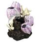 OASE Aquariendeko, biOrb Seepflanzen Ornament-Thumbnail