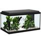 Aquarienset Advance 60 LED-Thumbnail