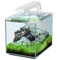 Aquarienset Nano Cubic 20 LED-Thumbnail