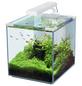 Aquarienset Nano Cubic 30 LED-Thumbnail