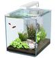 Aquarienset Nano Cubic 40 LED-Thumbnail
