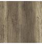 GetaElements Arbeitsplatte, windeiche beige, eiche, Stärke: 39 mm-Thumbnail