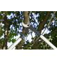 GARDENA Astschere »EnergyCut 750 A«, Amboss, max. Aststärke: 42 mm-Thumbnail